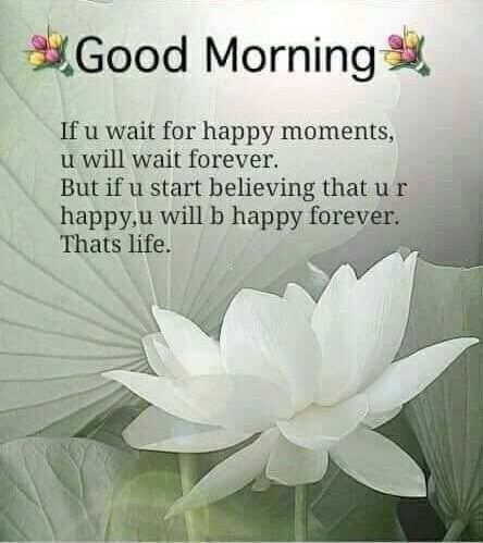 62 Good Morning Saying To Make Your Day Positive And Beautiful