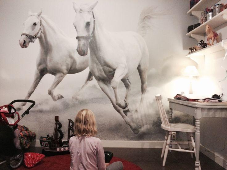 Bildresultat för häst tapeter
