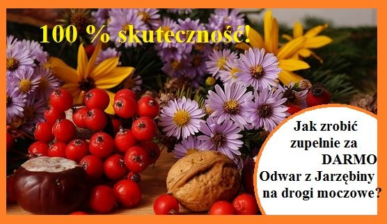 Zadbaj o drogi moczowe naturalnie! Jak? TAK >> http://8e251.skroc.pl <<
