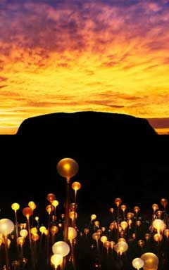 """Field of Light"" Ayres Rock Resort, Uluru, Australia"