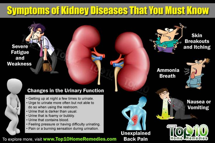 Top 10 Symptoms of Kidney Disease that You Must Know