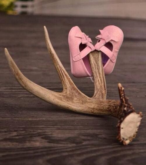 Baby shoes on antlers.