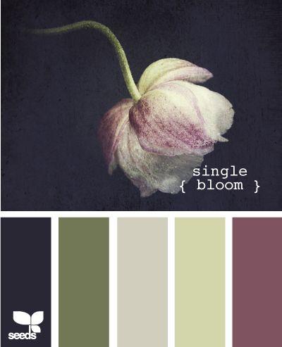 single bloom  (original source: http://design-seeds.com/index.php/home/entry/single-bloom3)