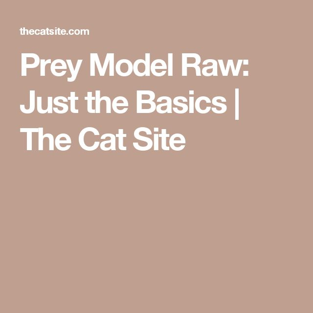 Prey Model Raw: Just the Basics | The Cat Site