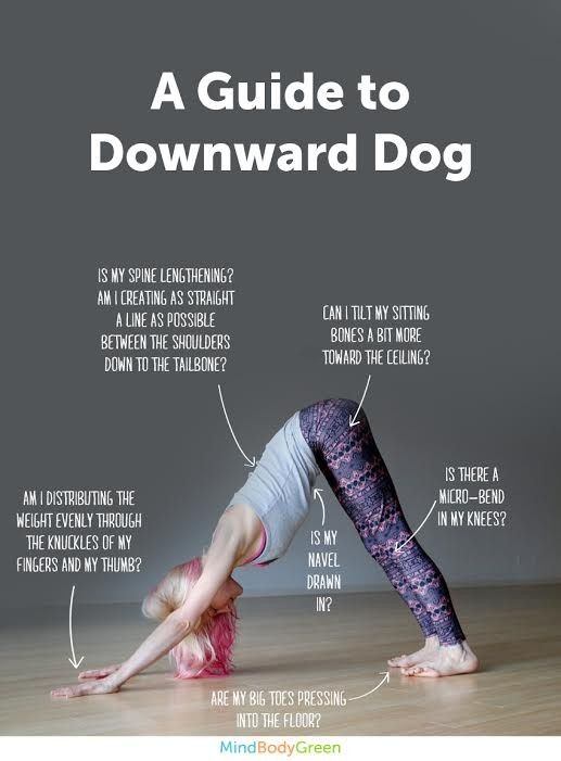 How To Do Downward Dog (Cute Infographic!) #motivation #inspiration #fitness…