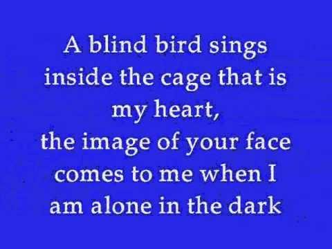DELA by Johnny Clegg (Lyrics)