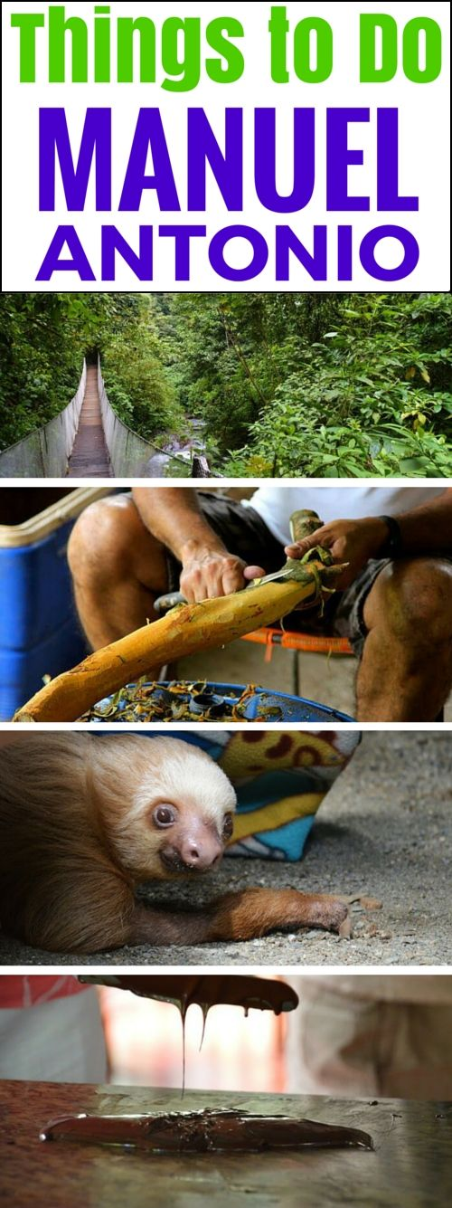 7 Off-the-Beaten-Path Things to Do near Manuel Antonio, Costa Rica. Visiting a wildlife sanctuary, touring a spice farm, taking a chocolate tour, hanging bridges, and checking out the local farmer's market. This and more ideas here: http://www.twoweeksincostarica.com/7-things-to-do-manuel-antonio/