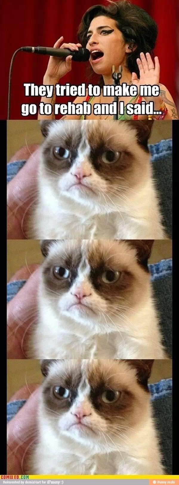 Grumpy Cat Rehab Grumpy Cat Pinterest