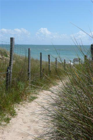 Camping des dunes, Ile de ré, France (60 places)