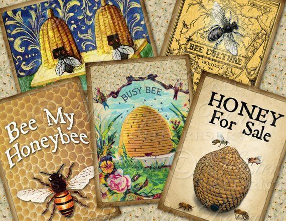 Honeybee Printable Hang Tags / Bees / Beehive / Honey