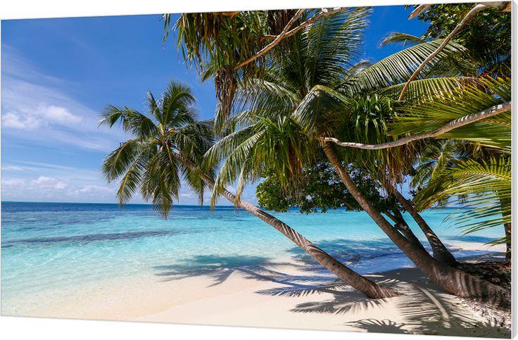 Palmen en zee, Malediven. Luxe wanddecoratie van Wallstars.
