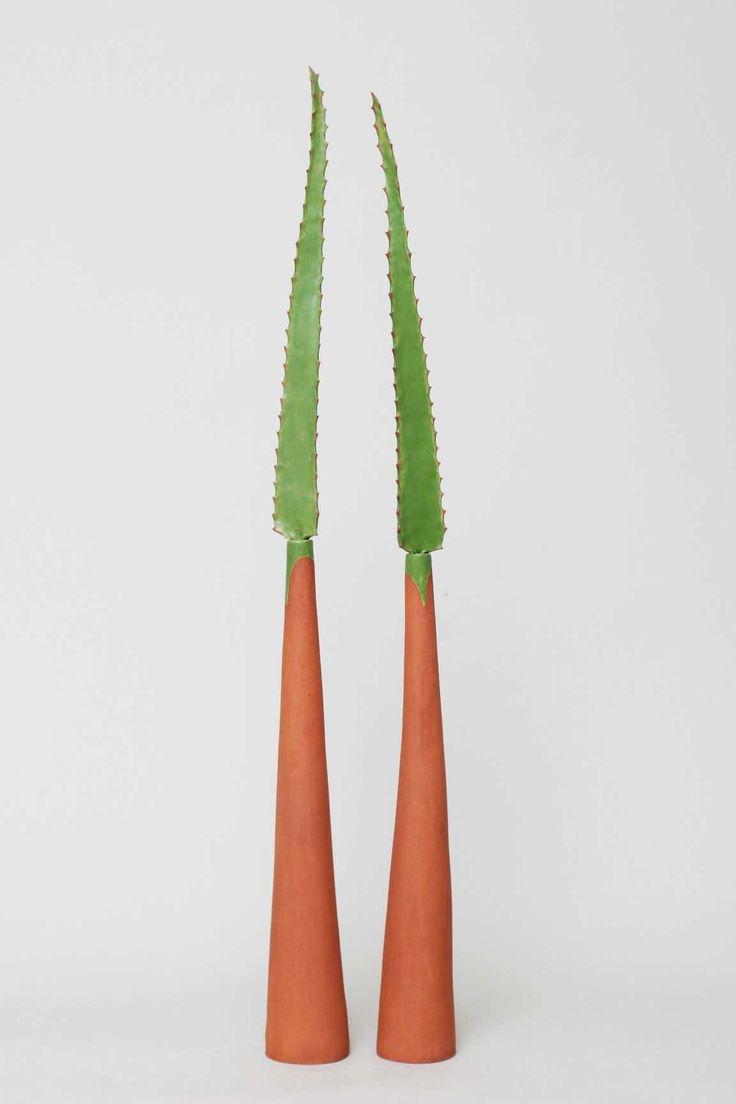 aloe leaves in a bottle ceramic vessel handmade sculpture clay Belinda Ormond