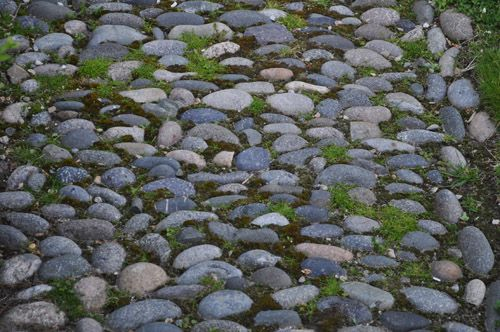 pebble pathwaysRocks Paths, Gardens Ideas, Rocks Gardens, Gardens Decor, Raunchy Pin, Gardens Design Ideas, Gardens Paths, Rocks Pathways, Gray Rocks