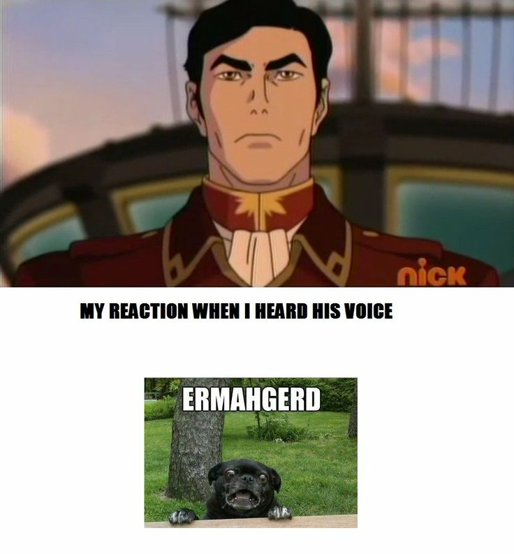 Haha yes!!! I absolutely loved the fact General Iroh was Zuko's voice actor