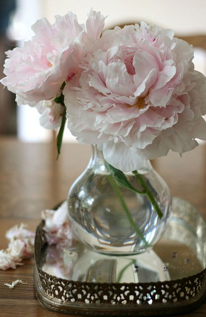 Simple Sweet South. little bud vases,. my mamma used to place these all over our 1832 home..simple beauties that make a house a home