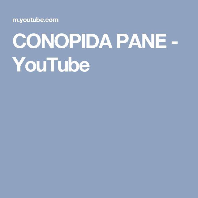 CONOPIDA PANE - YouTube