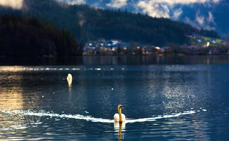 Hallstatt, Austria   Discovered from Dream Afar New Tab