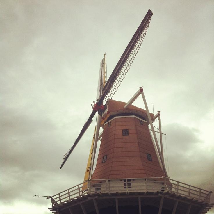 The windmill in Foxton, New Zealand.