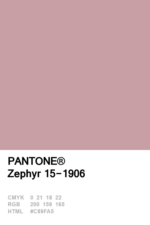 Pantone Zephyr 15-1906 Colour of The Day 21 January
