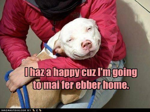 I haz a happy cuz I'm going to mai fer ebber home.