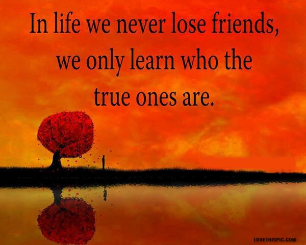 True Quotes About Life And Friendship : True friends quotes friendship quote sky tree life