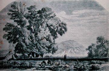 Μυθικά δένδρα http://ift.tt/2iboTWu