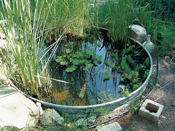 84 Best Images About Diy Stock Tank Pond On Pinterest