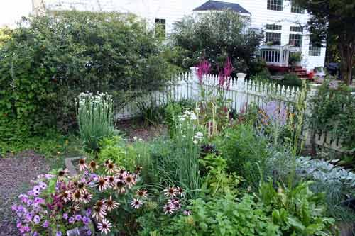 Another pretty front yard garden: Gardens Beds, Gardens Ideas, Growing Herbs, Front Yard Gardens, Perfect Potager, Herbs Gardens Design, Designer Muse, Design Muse, Beds Design