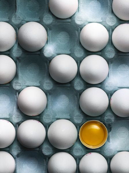 eggs / Eric Satten