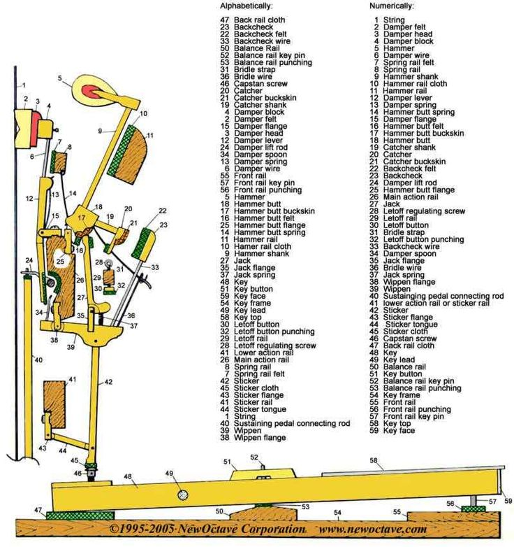 Upright Piano Action Diagram Parts Piano Manufacturing In 2019