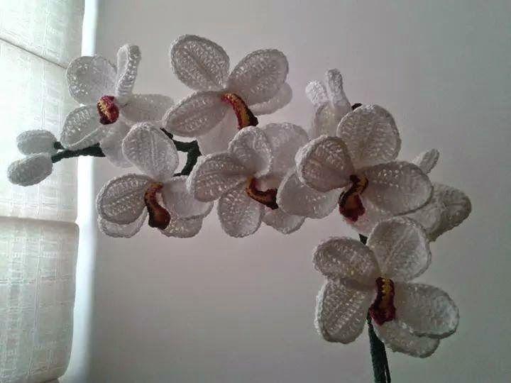 52 best crochet orchid free pattern images on pinterest amigurumi tra un punto e laltro tutorial orchidea uncinetto adesso anche con il ccuart Gallery