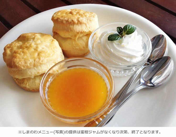 【 JOHN Burger & Cafe 】広島県尾道市東御所町3-25 / TEL.0848-25-2688 / 尾道の海岸通り、海の見える場所。テイクアウトも可能。 ------《営業時間》 11:00~19:00※水曜日定休(祝日の場合は翌日) #shimanowa_cafe #OnomichiCity_Hiroshima