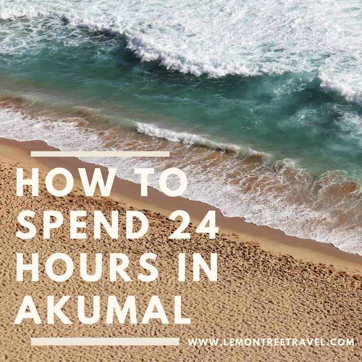 """In Mayan, Akumal mean, """"land of turtles."""" And most tourists visit Akumal in hopes to come face to face with the majestic sea turtle. Akumal is a small beach town located between Playa del Carmen and"""