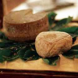 FORMAGGIO CAPRINO DELL'ALTO MUGELLO P.A.T. Formaggio grasso, fresco o di breve stagionatura, a pasta molle o semidura. In un territorio dove le colline concedono pascoli e prati per lo sfalcio dell'erba, le capre possono alimentarsi allo stato brado. Con il loro latte i caseifici locali producono Caprini freschi, ma anche stagionati, semplici o aromatizzati.