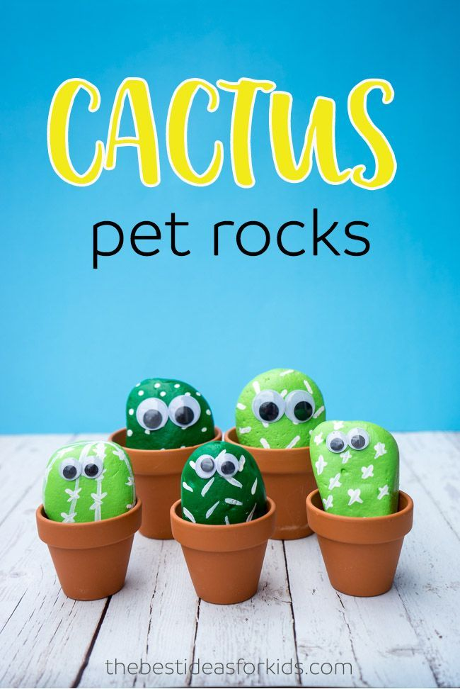 These pet cactus rocks are so cute! Such a fun kids craft! Perfect DIY activity to make your own cactus rocks.
