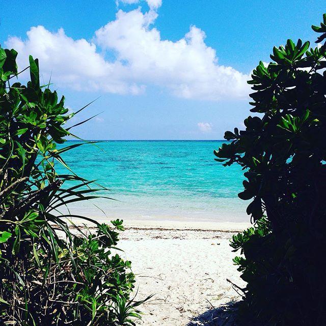 【0.1kg】さんのInstagramをピンしています。 《#夏休み #休み #休暇 #旅 #バカンス #vacances #trip #海  #ビーチ #砂浜 #beach #川平タガバー》