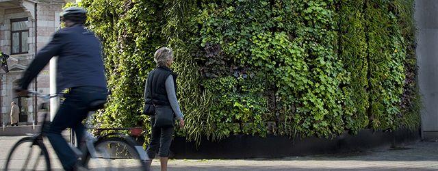Vertical garden Helsingborg, Sweden