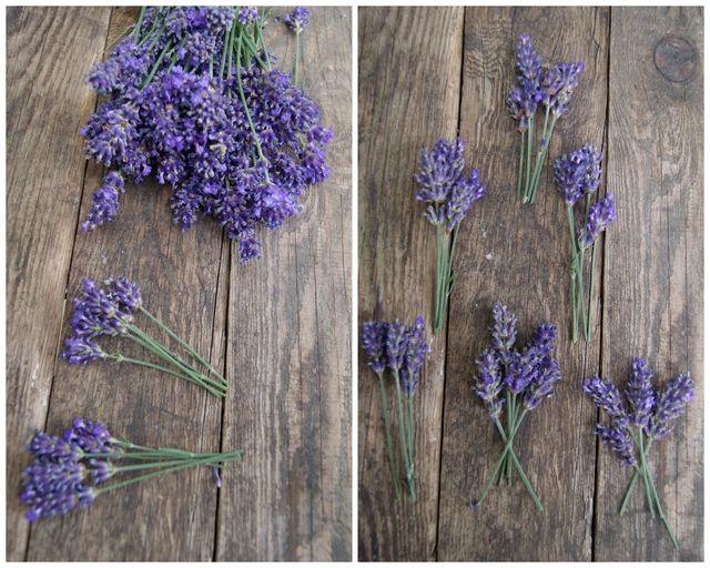 DIY - Lavendelkranz selbst binden