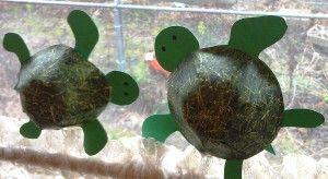 Uma boa ideia! Tartaruga em 3-D