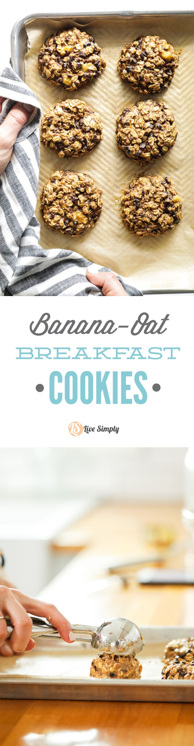 So good! Dairy-free and egg free breakfast or snack cookies. Just like banana bread but better, and in cookie form.