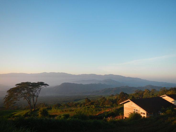 Secara geografis, Pagaralam adalah sebuah kota yang letaknya berada di lereng gunung Dempo. Tapi bagi saya, Pagaralam adalah serpihan surga yang jatuh di Selatan Sumatera. Banyak tempat menarik yang bisa dikunjungi disini. Mulai dari perkebunan teh, air terjun hingga atap Sumatera Selatan yaknik Gunung Dempo yang puncaknya berada di ketinggian 3159 mdpl. Perjalanan saya dari …