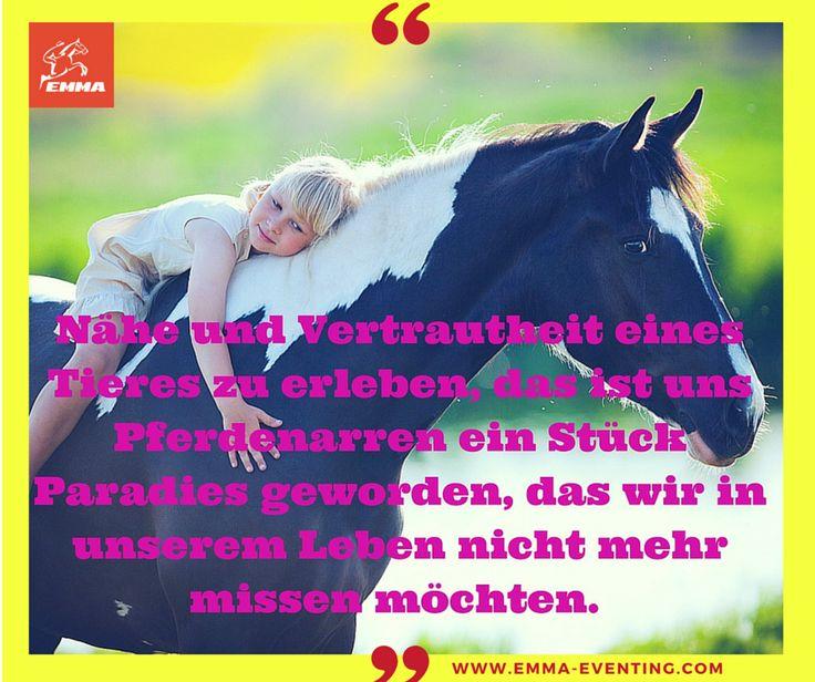#teufelskralle, www.emma-eventing.com