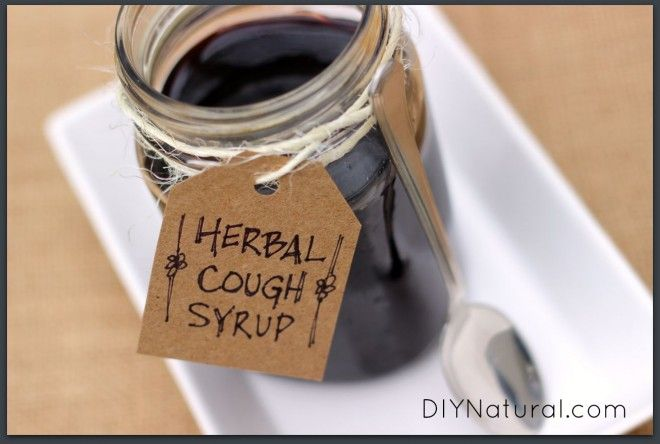 Cough Syrup with elderberry, elder flowers, and plaintain leaf