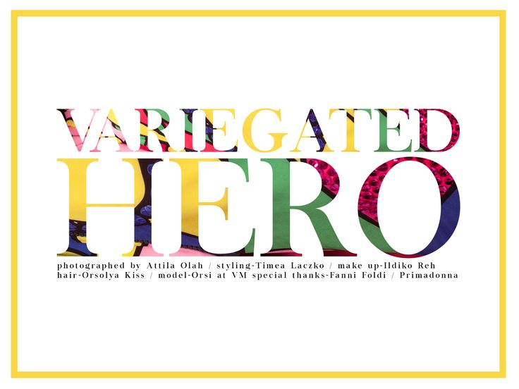 Variegated Hero, photographed by Attila Olah, styled by me