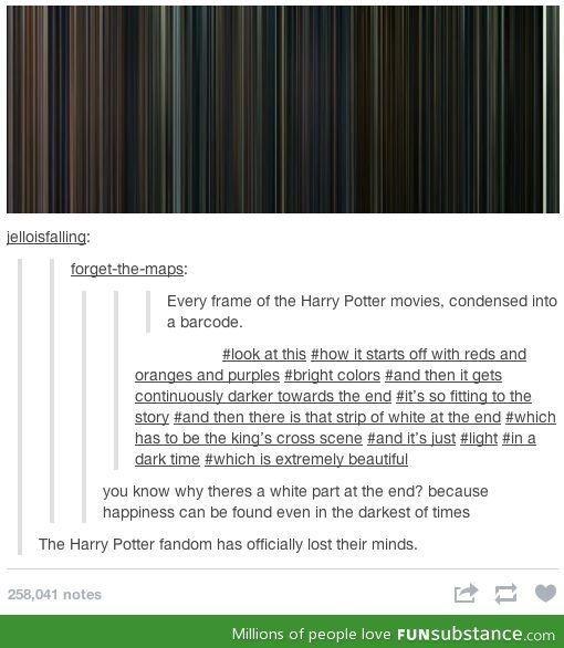 Harry Potter frames - The Harry Potter fandom have lost their minds...