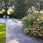 onderhoud gazon snoeien haag taxus buxus onderhoud appartement onkruid verticuteren hakselen zwembad hortensia tuin