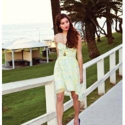 ladakh pasteleen dress