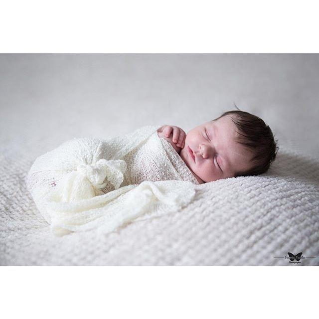 En train de préparer un album de naissance preparing a newborn photo album with this