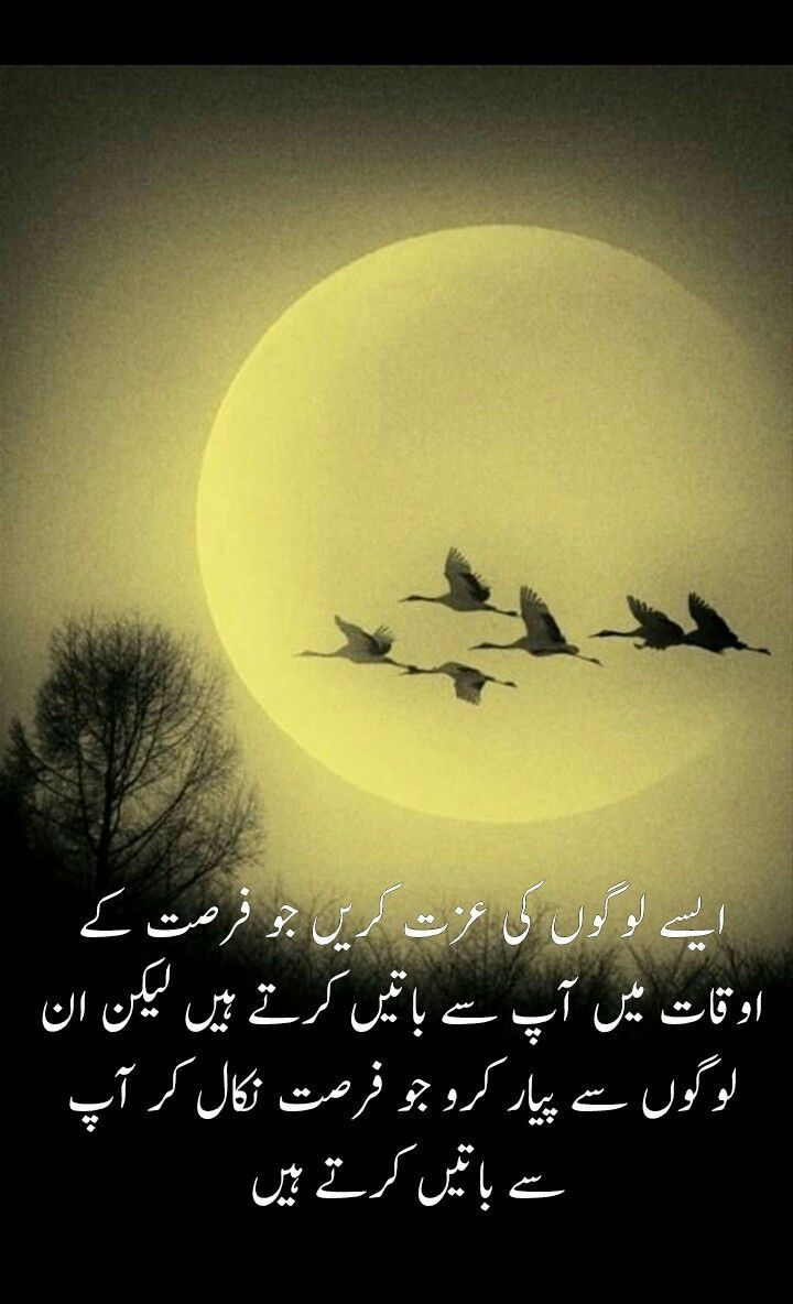Pin by Khushi S on Urdu quotes | Poetry quotes, Urdu quotes