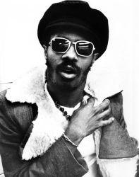 Stevie Wonder genio